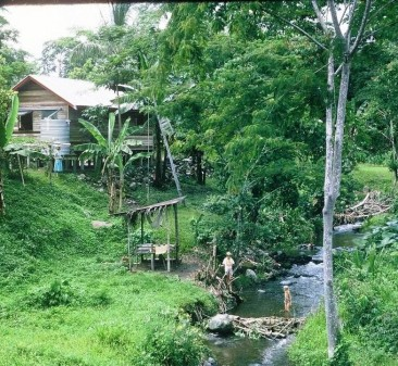 Our jungle home and river